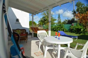 Sweet Jewel Tropical Gecko Studio in Barbados
