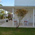 Tropical Gecko Studio - Patio & Garden