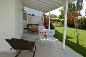 Sweet Jewel Tropical Gecko Studio in Barbados