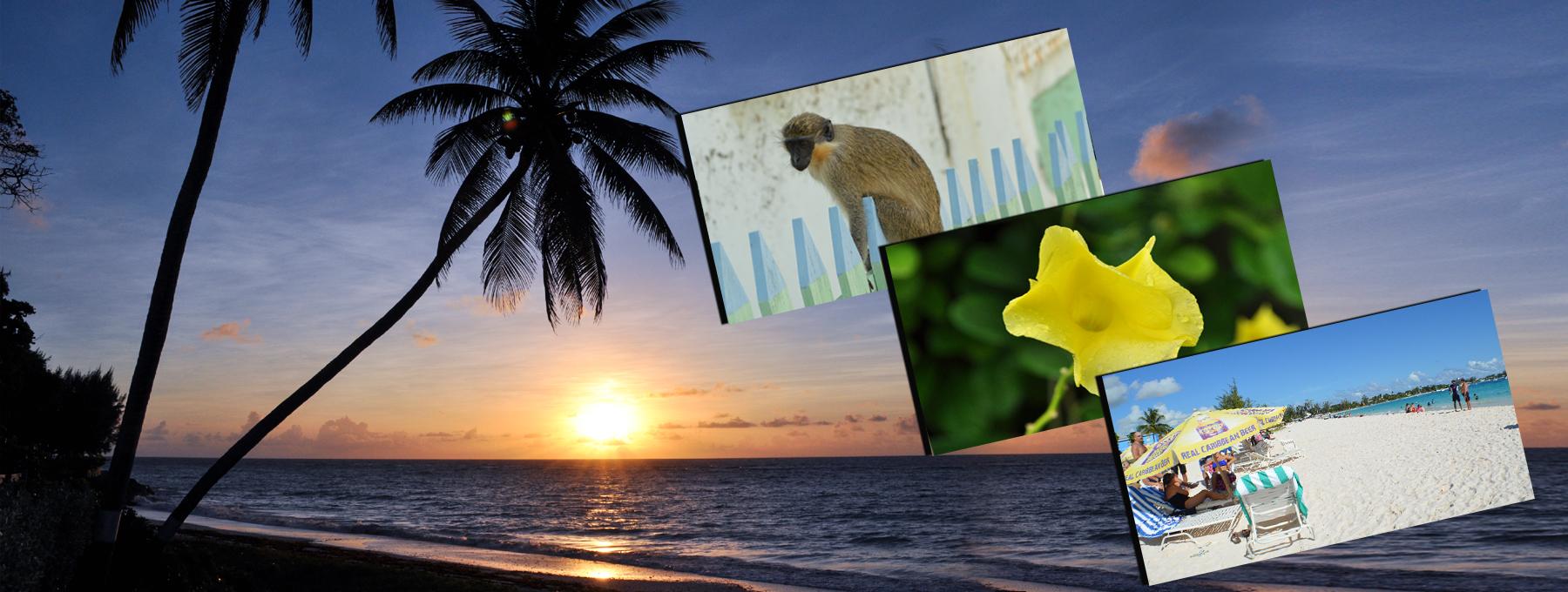 Barbados accommodations